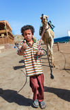 Boy leads a camel Stock Image