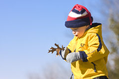 Boy with leaf Royalty Free Stock Images