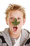 Boy with leaf on his nose. Teenage boy with a leaf on his nose making a funny facial expression Royalty Free Stock Photos