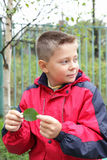Boy with leaf looking sideways Stock Image