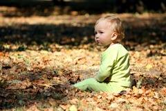 Boy on a leafs. Little boy sits on a leafs Stock Photos