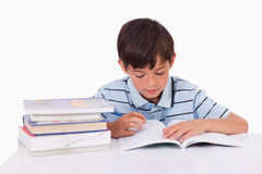 Boy learning his lessons Stock Images