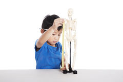 Boy learns human anatomy Royalty Free Stock Images