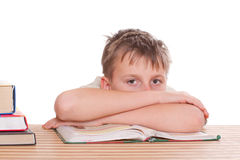 Boy learns lessons Stock Photography