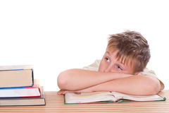 Boy learns lessons Stock Image