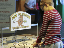 A Boy Learns About Potatos at the Discovery Children`s Museum, L Royalty Free Stock Photo