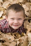 Boy in leaves Stock Photos