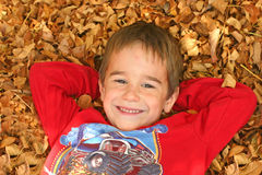Boy in Leaves stock images