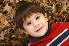 Boy in Leaves Royalty Free Stock Image
