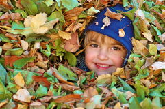 Boy in the leaves Royalty Free Stock Images