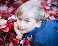 Boy In The Leaves Stock Photo