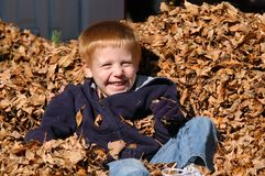 Boy in Leaves. A young boy sits quietly in a pile of leaves enjoying the warmth of the sun on a late autumn day Royalty Free Stock Photos