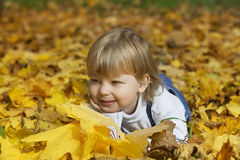 boy in leaves of autumn lies Stock Images