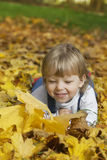 boy in leaves of autumn lies Stock Image