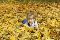 boy in leaves of autumn lies Royalty Free Stock Image
