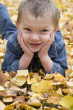 Boy in leaves close up Royalty Free Stock Photo