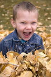 Boy in leaves with exicited facial expression Royalty Free Stock Image
