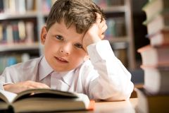 Boy in the library Stock Photography