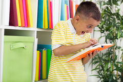 Boy in the library and favorite books Royalty Free Stock Photo
