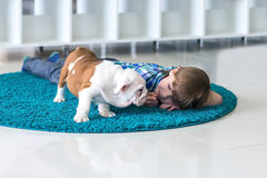 The boy lies on the floor with the English bulldog Stock Images