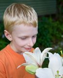 Boy and lily Royalty Free Stock Image