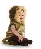 Boy in lion costume Stock Image