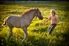 Boy with little horse Royalty Free Stock Image