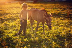 Boy with little horse Stock Photo