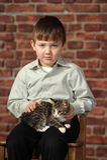 Boy with little kitten Royalty Free Stock Photos