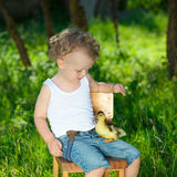 Boy with little yellow duckling in summer village Stock Photography
