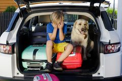Family vacation suitcases Labrador dog boy kid baggage blue pink orange house sun summer luggage car ready holidays green trank bo. Boy are loading multicolored Royalty Free Stock Image