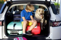 Family vacation suitcases Labrador dog boy kid baggage blue pink orange house sun summer luggage car ready holidays green trank bo. Boy are loading multicolored Stock Image