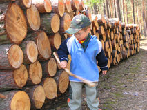 Boy and logs. Young boy and logs in forest stock photography