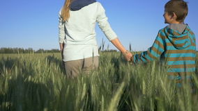 Boy and long-haired blonde girl walking holding hands in the field, good mood, boy and girl have happy, In search of. Boy and long-haired beautiful blonde girl stock video