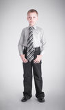 Boy with a long tie Stock Photography