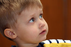 Boy Looking Royalty Free Stock Image