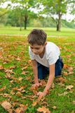 Boy is looking in the autumn leaves. The boy is looking in the autumn leaves Stock Photo