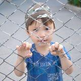 Boy looking through the bars Stock Photos