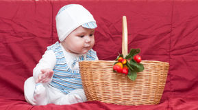 Boy looking into the basket Royalty Free Stock Images