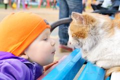A boy looking at a cat Stock Photo