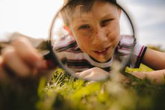 Boy looking through magnifying glass royalty free stock image