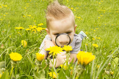 Boy looking through a magnifying glass on the grass Stock Image