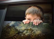 Boy Looking out Car Window at T-Rex Dinosaur. A young scared child is looking out the car window at a dangerous t-rex dinosaur for an imagination, history or Stock Image