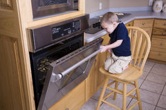 Boy looking in oven stock image