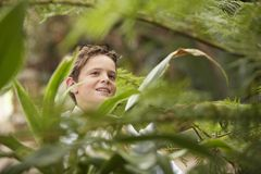 Boy Looking At Plants Royalty Free Stock Images