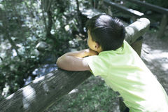 Boy looking at the river from a bridge stock photos