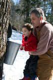 Boy looking in a sap bucket. Father holding his young son up to look in a sap bucket Stock Photos