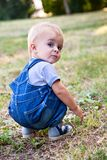 A boy is looking for something in the grass Stock Photos