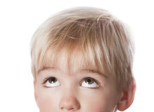 Boy Looking Up. Close-up portrait of a cute little boy looking up royalty free stock image