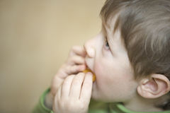 Boy Looking Up While Eating In House Royalty Free Stock Photography